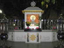The Bodhi Tree at night