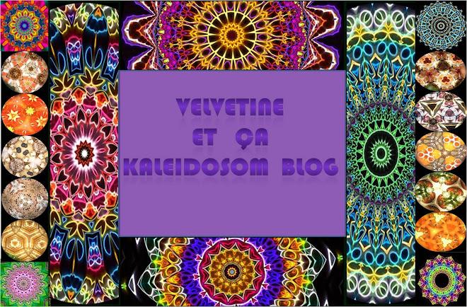 Velvetine et ça Kaleidosom Blog