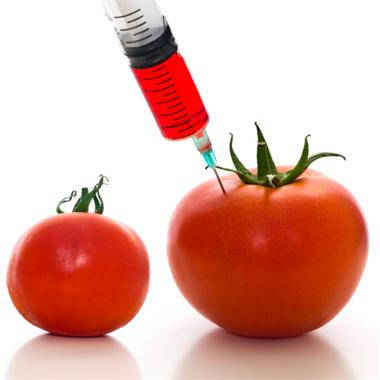 research papers on food biotechnology