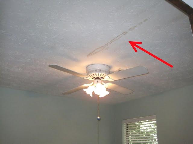 ceiling+stain.jpg