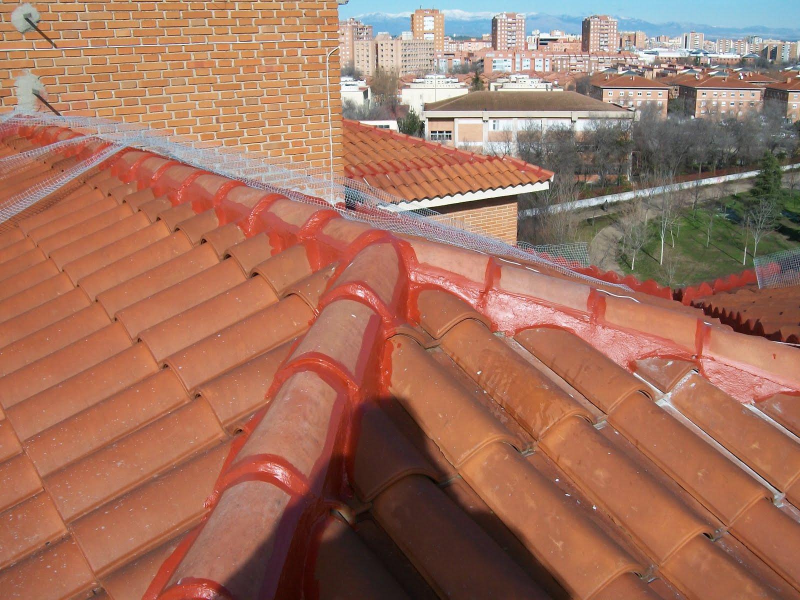 Cubiertas impermeabilizar tejados teja portuguesa teja for Tejado de madera madrid