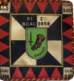 Guião do Batalhão de Caçadores 2858