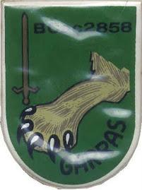"""Batalhão de Caçadores 2858 """"Os Garras"""""""