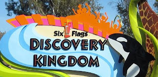 A Short History of Six Flags. Angus Wynne, founder of Six Flags, would be proud of the company's rise to preeminent standing in the family entertainment industry. A pioneer in the truest sense of the word, Mr. Wynne broke new ground when he opened the first Six Flags park, Six Flags Over Texas, in