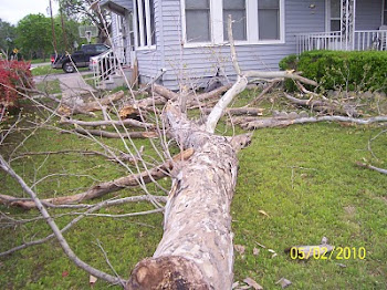 Tree fail on my house...wow!!!
