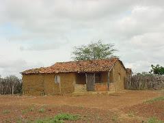 Uma casa na caatinga