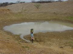 A busca de água na caatinga
