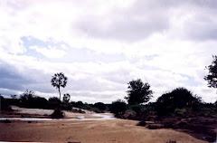 Um rio temporário da caatinga