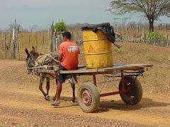 O transporte de água na caatinga