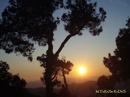 Imatge cedida per: M.TeReSa