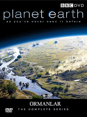 421-Yeryüzü Belgeseli - Planet Earth (2006) - Ormanlar Türkçe Dublaj/DVDRip