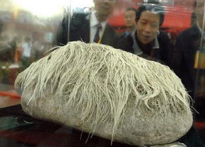 http://2.bp.blogspot.com/_ERGrznxTIwo/RjWFyL2-WPI/AAAAAAAACJw/RNEfISTaJno/s400/hair-growing+stone.jpg
