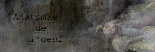 Anatomie de l'oeuf