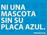 """""""PLACA AZUL"""" Iniciativa contra el abandono de mascotas"""