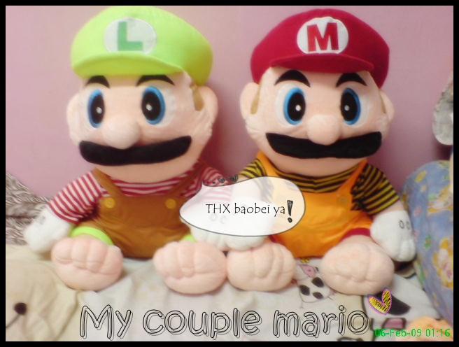 Our Couple Mario