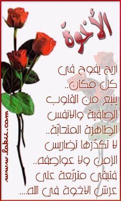 friend_04-lakii