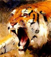 Chinese Astrology: The TIGER