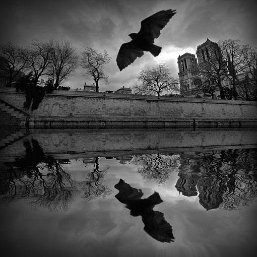 Banco de im genes fotos incre bles en blanco y negro 34 for Imagenes bonitas en blanco y negro