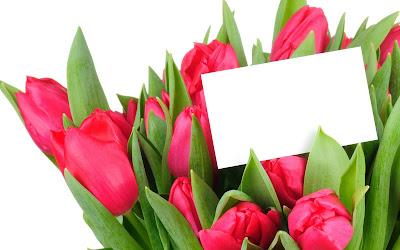 Tulipanes de colores para el Día de las Madres