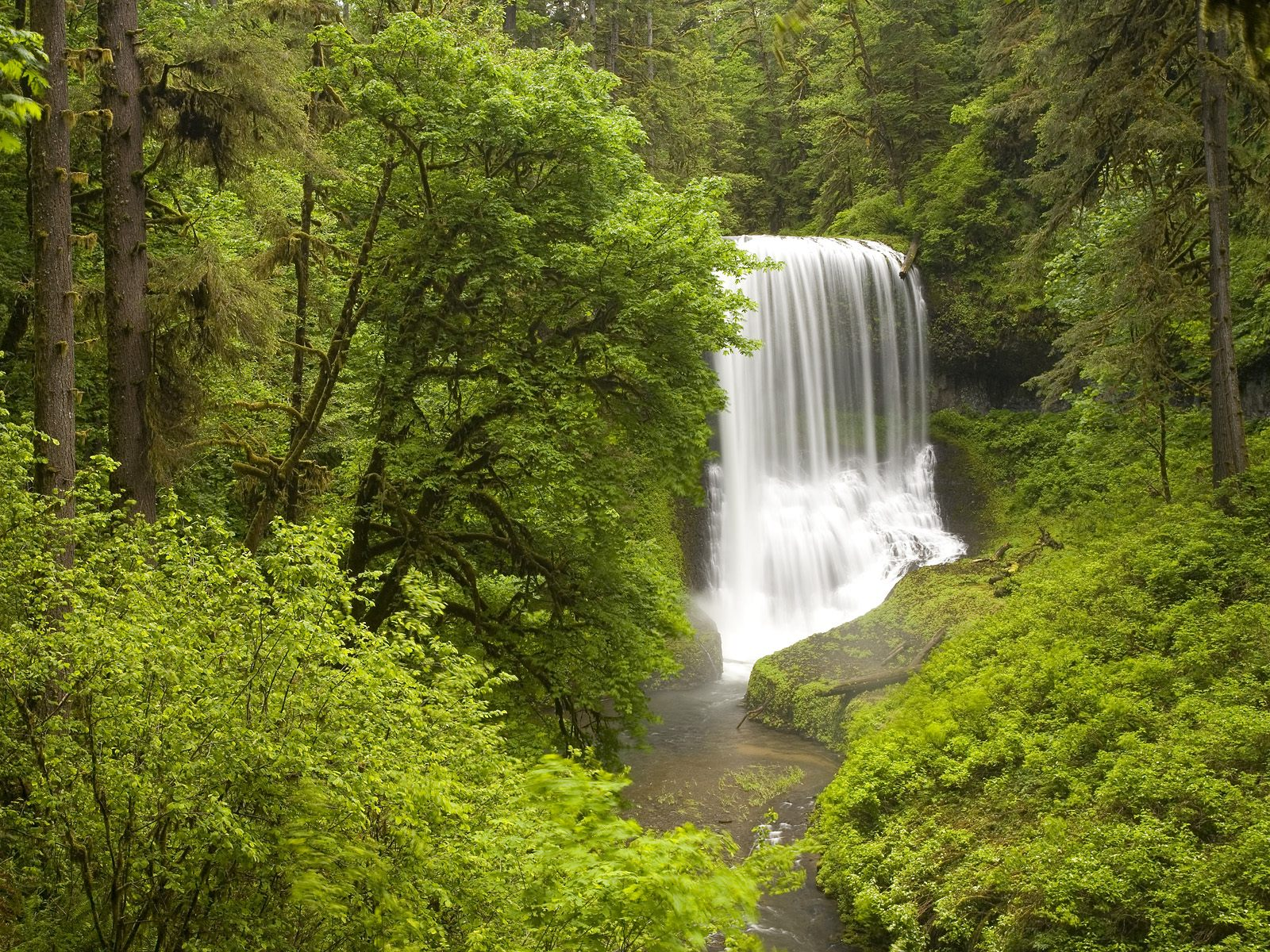 http://2.bp.blogspot.com/_EZ16vWYvHHg/S9HUbDlSw0I/AAAAAAAALIE/GBkZc1E4QFY/s1600/Middle+North+Falls,+Silver+Falls+State+Park+in+Spring,+Oregon.jpg