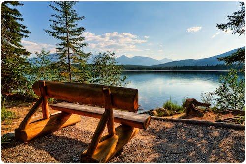 Imágenes de bosques y santuarios naturales (37 fotos)
