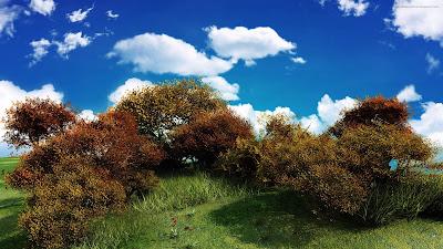 Paisajes Naturales Verdes Prados Natural Landscapes Photos