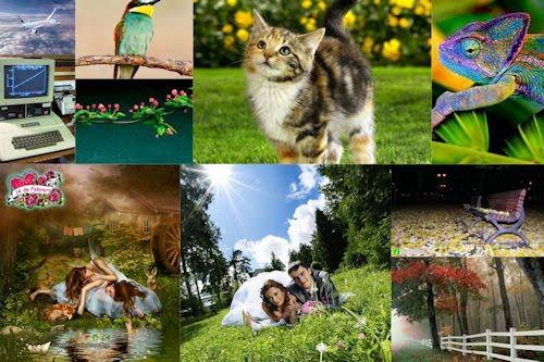 Selecciones especiales de FotoFrontera I