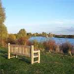 a bench overlooking the Fairlop waters lake