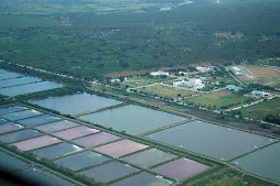 aquaculture and sarangani capitol