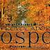 "Provocador Gospel: Resenha do CD ""Sonhos de Deus"" de Rayssa e Ravel  (Desculpe a sinceridade!)"