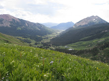 401 trail at crested butte