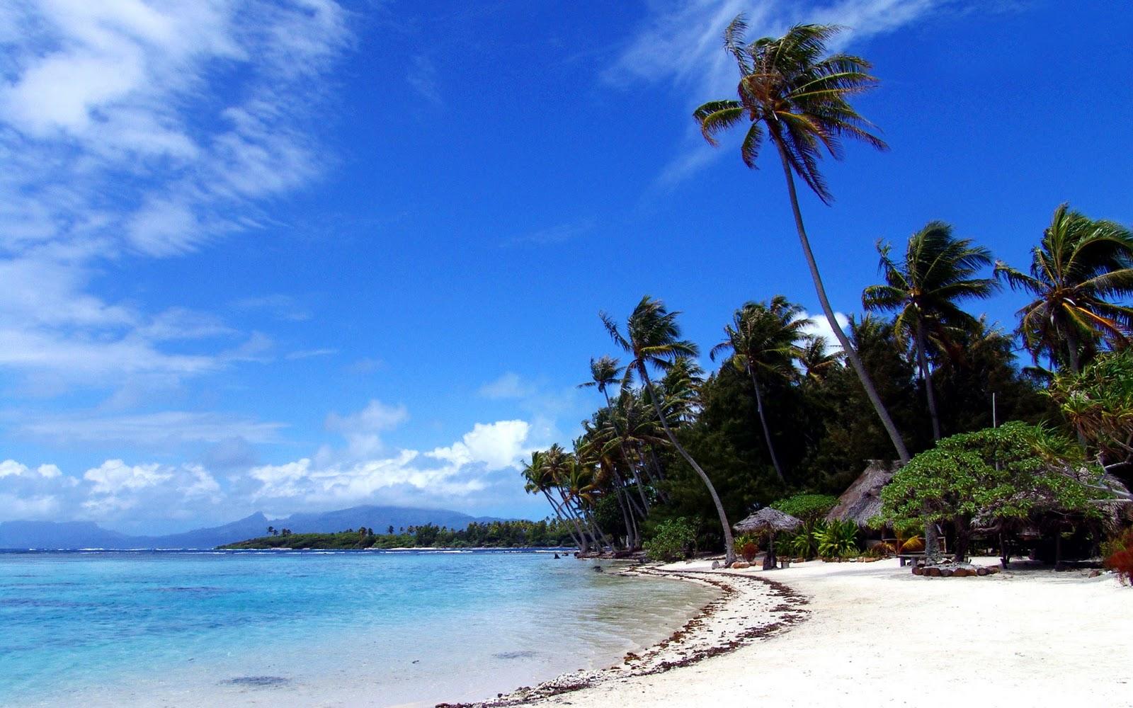 http://2.bp.blogspot.com/_EbZ6Jho2i70/TK5ODxafGVI/AAAAAAAAAKw/F6twYHlNcUQ/s1600/windy-day-on-tropic-beach-wallpaper-1680x1050.jpg