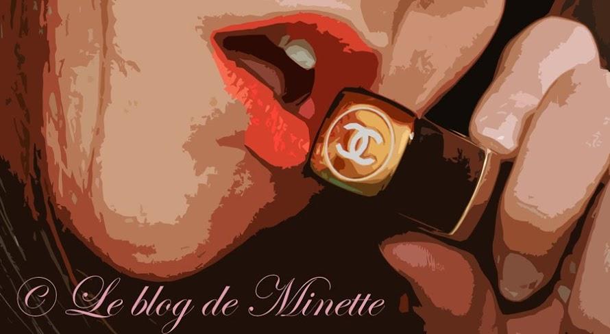 Le blog de Minette