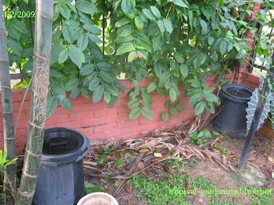 organic compost bins malaysia