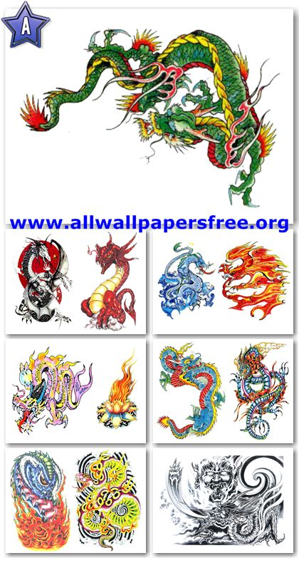 70 Amazing Dragons Tattoo Designs [Up to 3000 Px]
