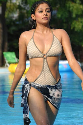 Bikini became a traditional wear for SouthIndianActress - Priyamani, Nayanthara and Anushka