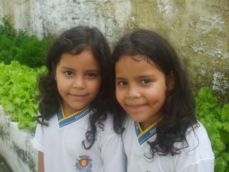 Fabiana e Fernanda de Souza Costa