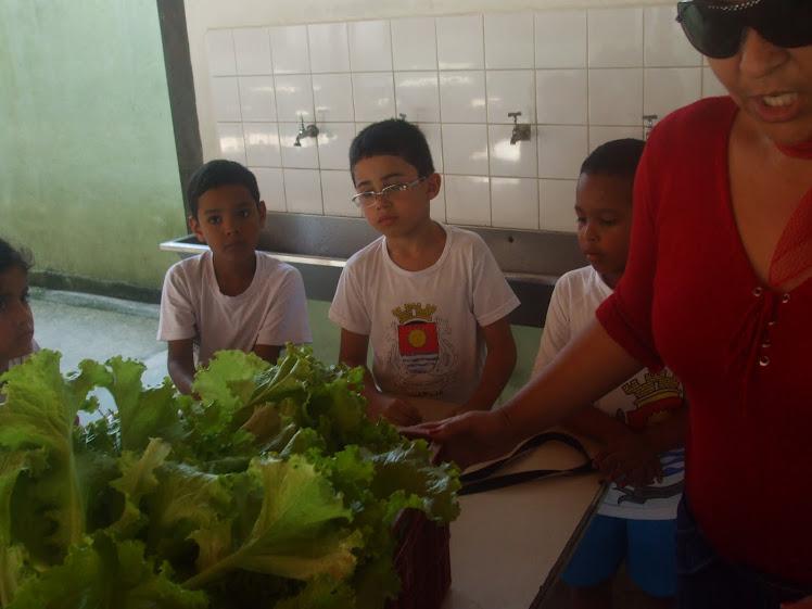 Explicação sobre a assepsia durante a preparação dos alimentos