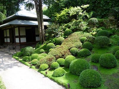 Si j 39 avais un blog si on allait au jardin - Ou planter le muguet ...