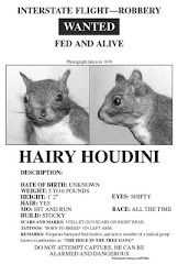 The Hairy Houdini Store