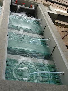 bowo rahmanto w: membuat kolam koi