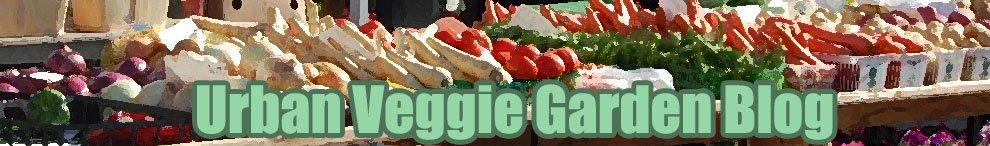 Urban Veggie Garden Blog