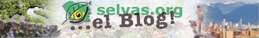 Selvas Blog