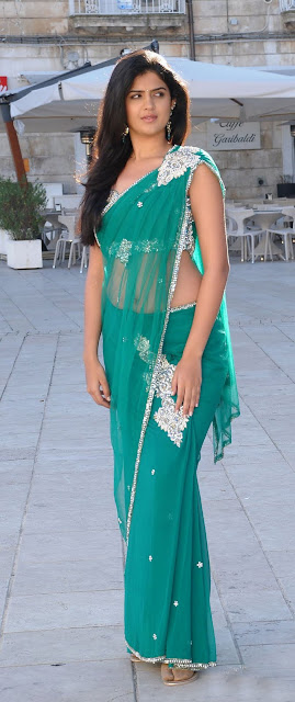 deeksha+seth ALLHOTACTRESSIN.BLOGSPOT.COM+%25286%2529 Actress Deeksha Seth in Hot Spicy Green Saree Wallpapers