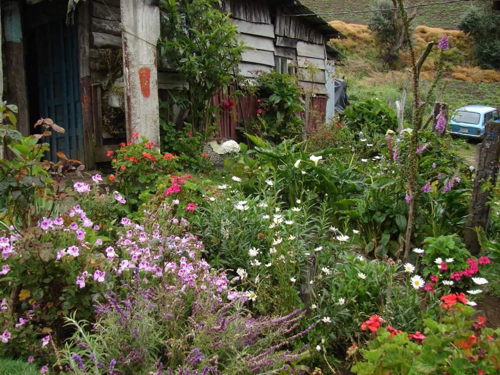 Paisajismo pueblos y jardines jardines vernaculares de - Antejardines pequenos fotos ...