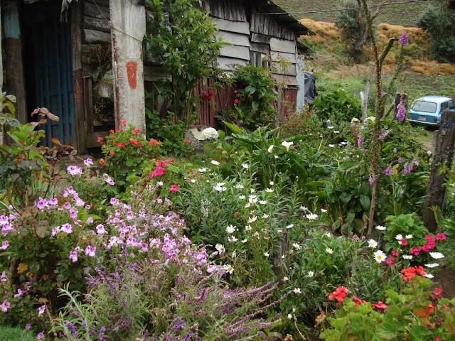 Paisajismo pueblos y jardines jardines vernaculares de - Paisajismo jardines casas ...