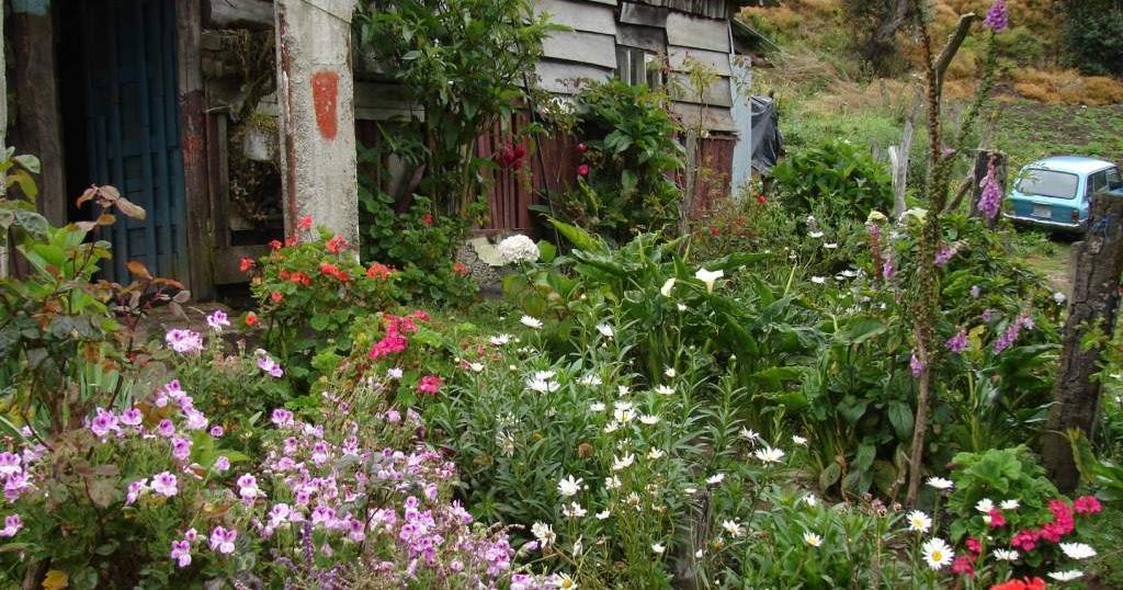 Paisajismo pueblos y jardines jardines vernaculares de for Jardines costa rica