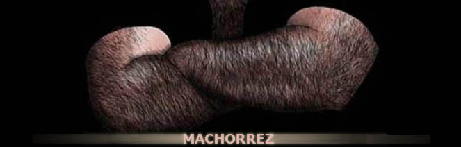 Machorrez S.A.