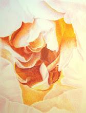 Emerging Rose
