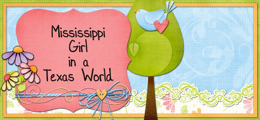 Mississippi Girl in a Texas World